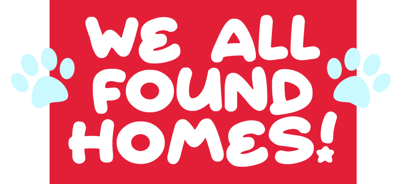 We All Found Homes!